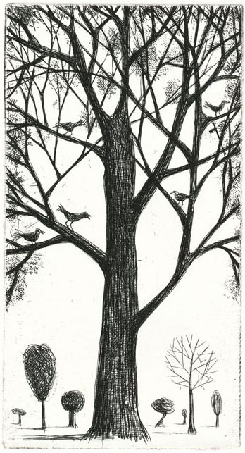 guido pigni birds etching