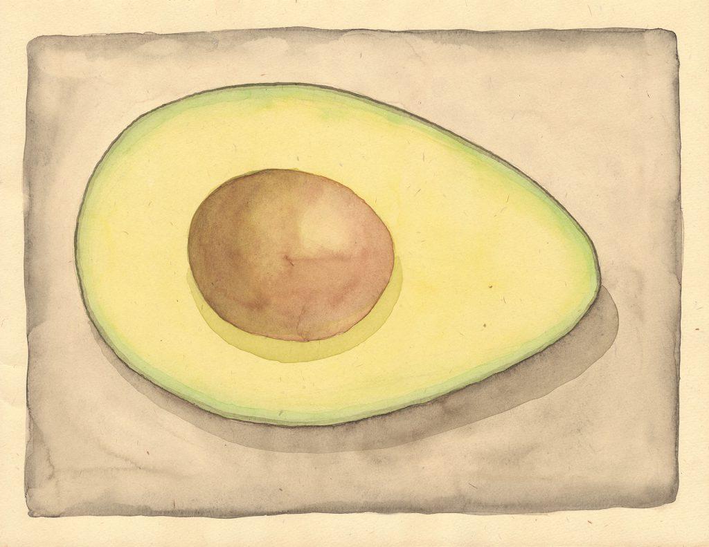 Guido Pigni_avocado watercolor